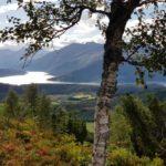 Utsikt  innover  Todalsfjorden  og  Todalsfjella  !