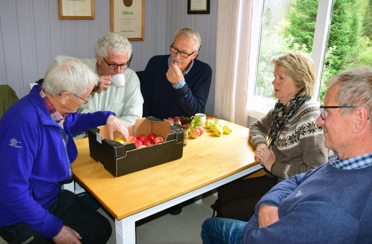 Det var fleire som hadde med epler for å få hejp til å artsbestemme dem. Frå venstre Gustav Redalen, Anders Talgø, John Moen, Eli Moen og sven Olav Svinvik.  Foto: Jon Olav Ørsal