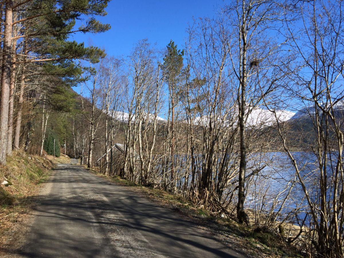 Fin tur å gå Haltbakkvegen. Foto: Dordi J H
