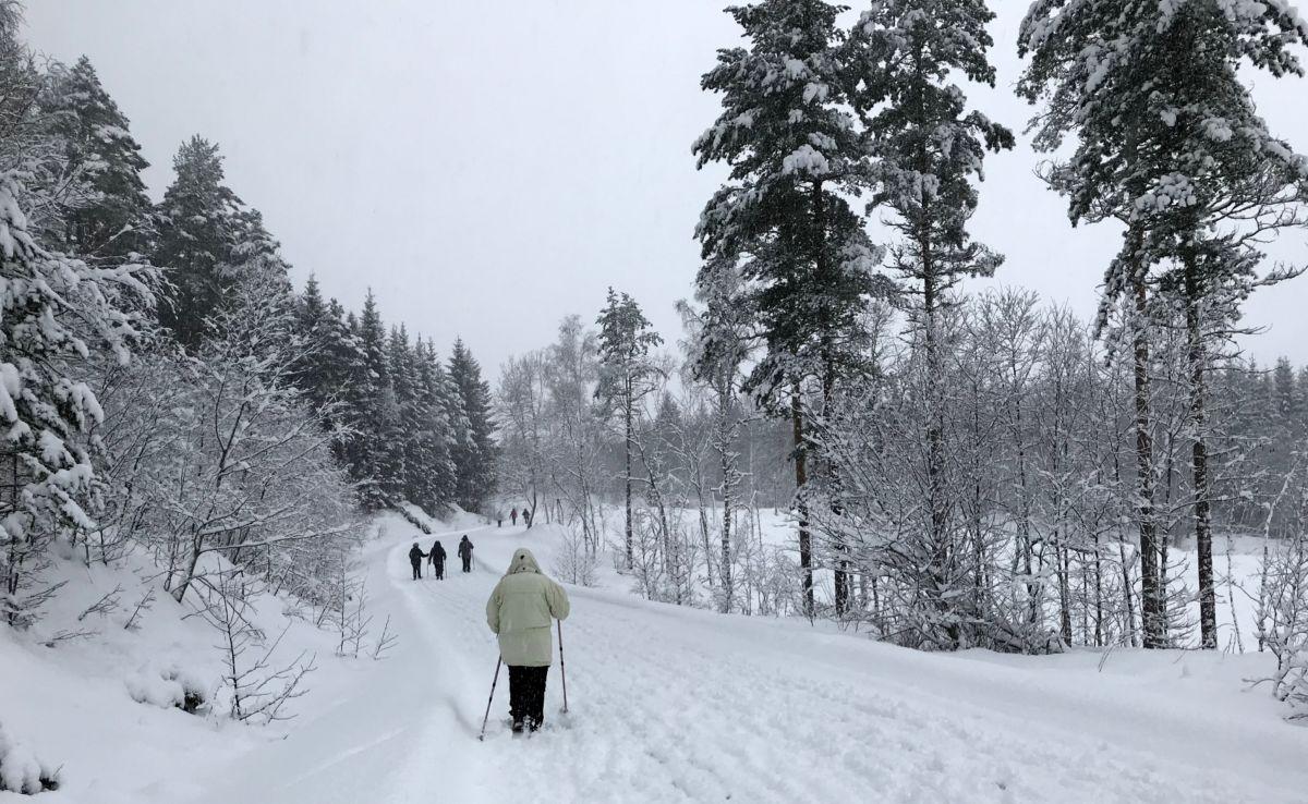 Vinterdag i Øyalia! Foto: Dordi J H