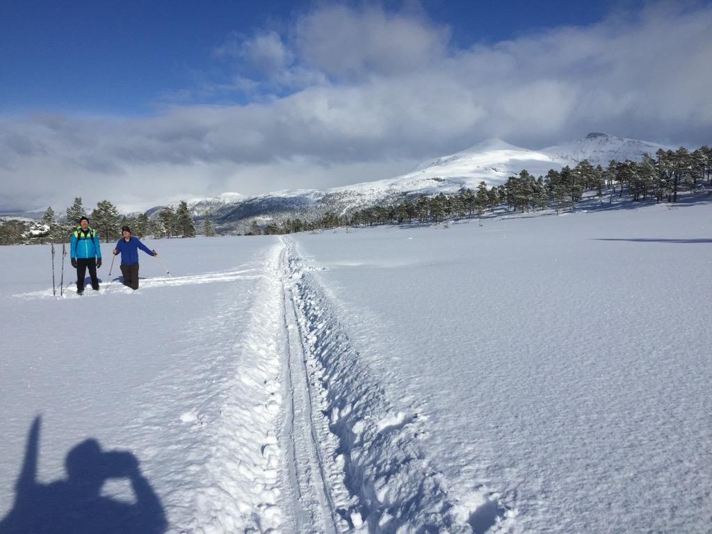 Ut  på  ski!