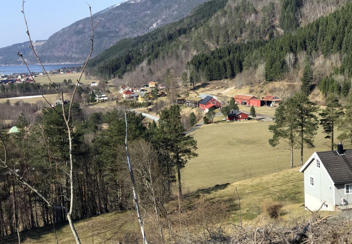 Utsikt mot Husbygarden. Foto: Dordi J H