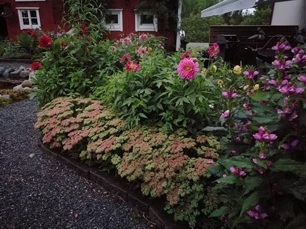 Planteloppemarknad  –  og  hagelagstur  til  Skatval