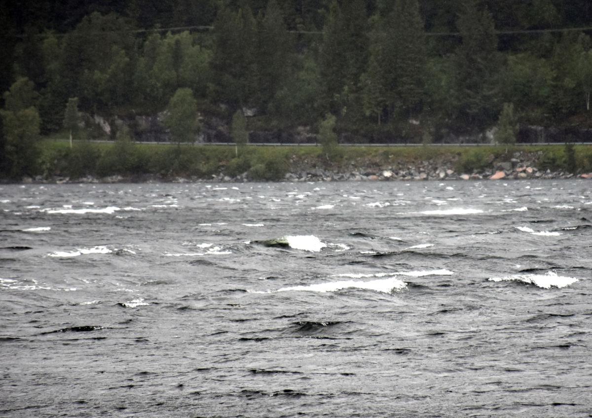 Det var skumtoppar på Todalsfjorden fredag føremiddag.  Foto: Jon Olav Ørsal