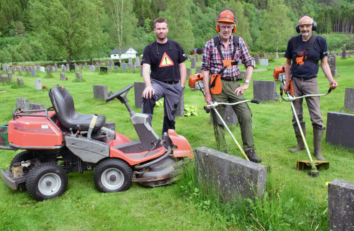 Arkivbilete frå slåttedugnad i 2017.  Foto: Jon Olav Ørsal
