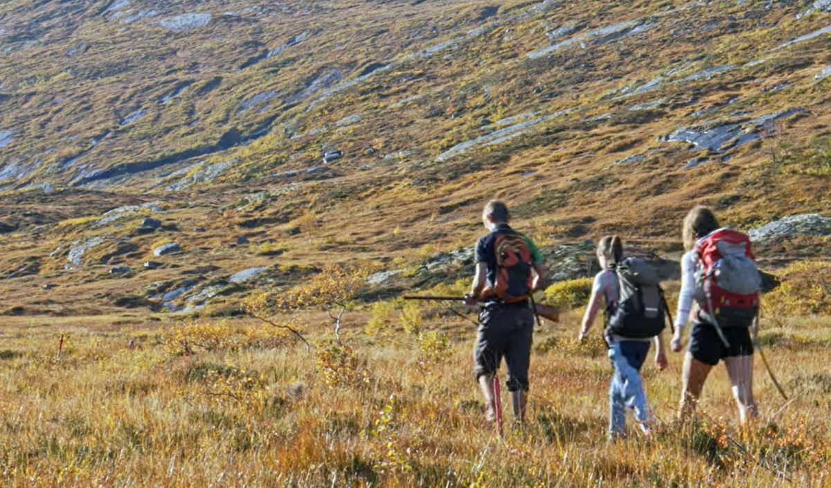 Tingvollelevar på hausttur med jakt og toppturar i Todalsfjella.  Foto: Jonas Rismyhr, Tingvoll VGS