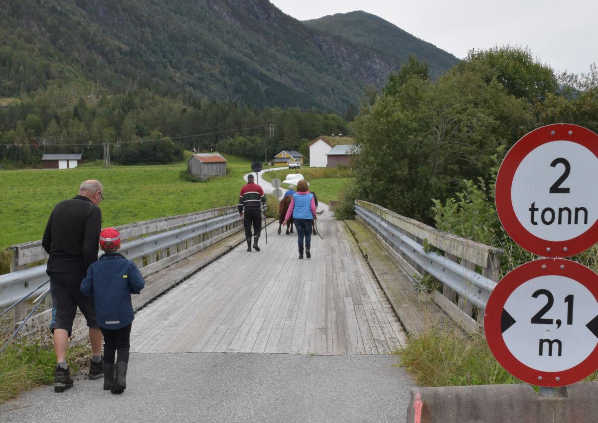 Omveg via Øyabrua for Austistukyrne!  Foto: Jon Olav Ørsal