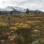 Nysnø  på  Kjærringa