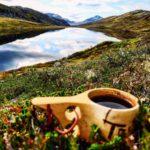 Kaffepause  ved  Lauvåvatnet