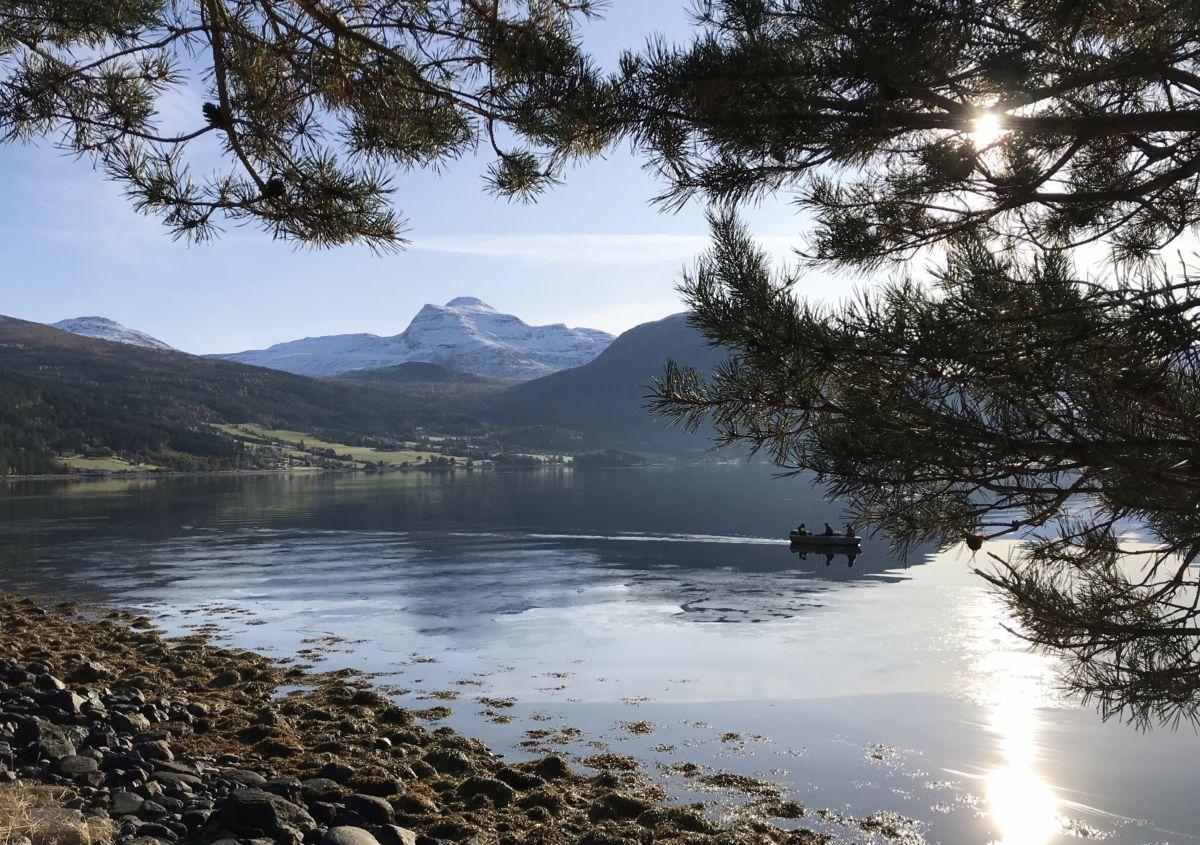 Utsikt mot Sulå. Foto: Dordi J H