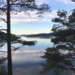 Blå  himmel  og  stille  fjord