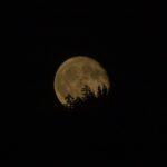 Novembermånen  syner  seg  bak  åskammen