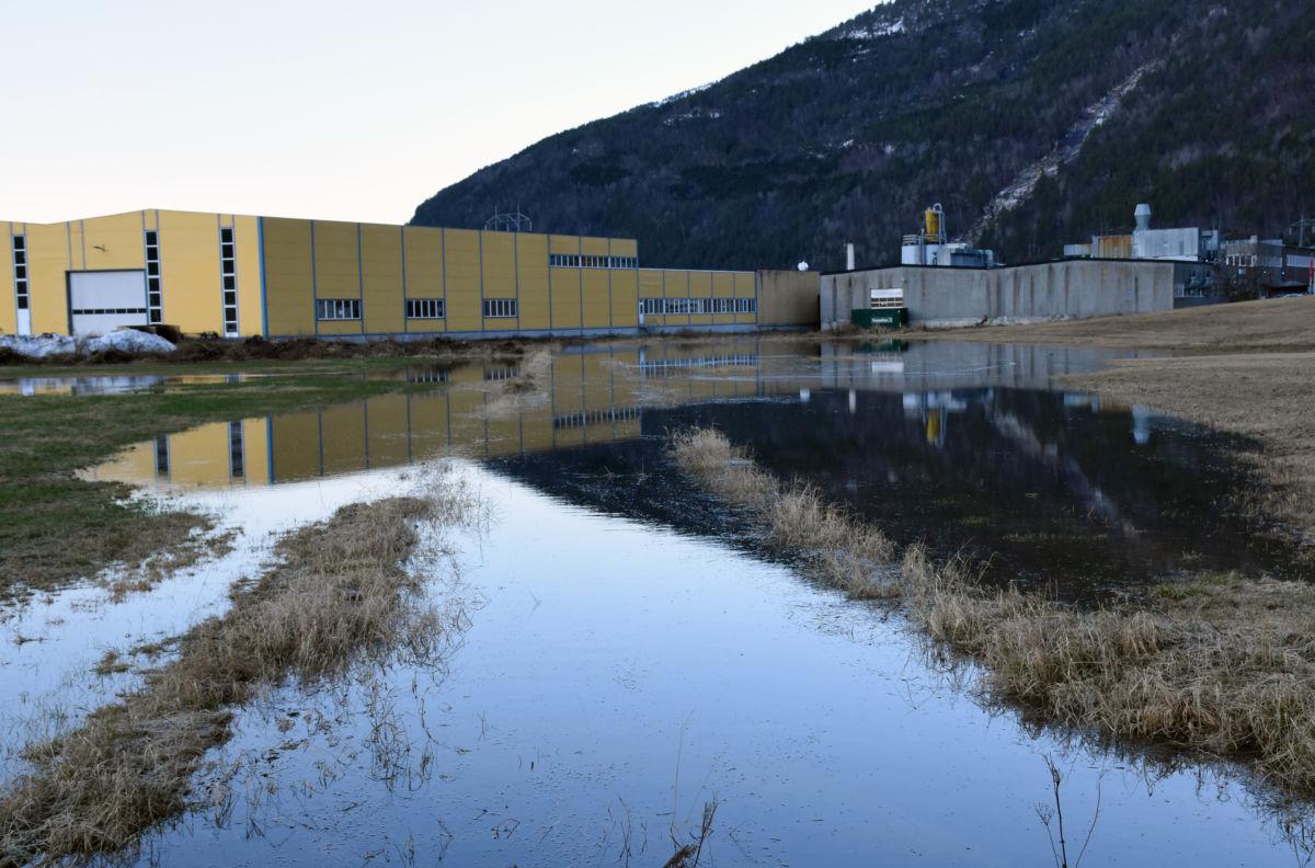 Det var mykje vatn rundt Talgøfabrikken, men langt i frå at den var omflødd.  Foto: Jon Olav Ørsal