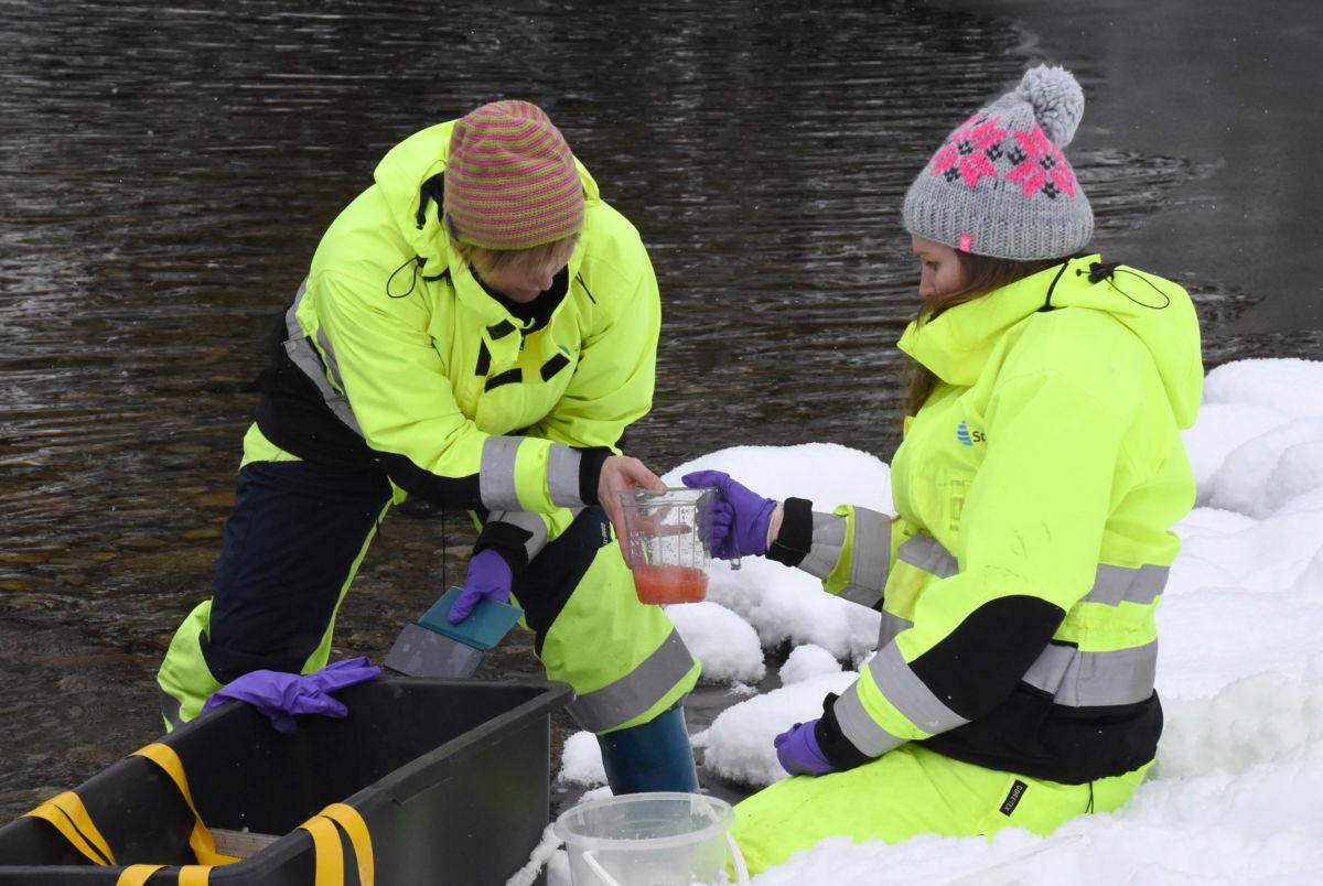 Monika Klungervik og Frøydis Bolme Hamnes posjonerer ut befrukta øyerogn som skal settast ut i Toåa.  Foto: Driva/Jon Olav Ørsal