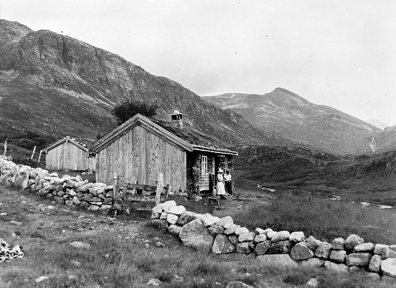 Kårvatnleigmålet fra Todalen historielag