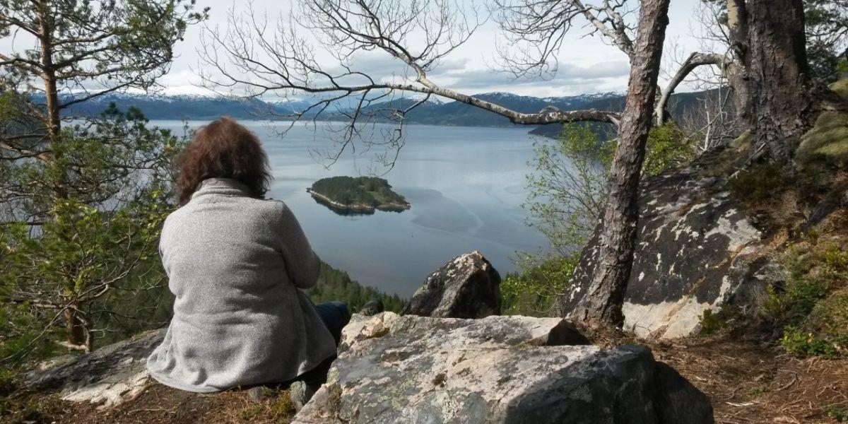Utsikt frå rundturen på Årnes. Fotoeigar: Stikk UT! Surnadal