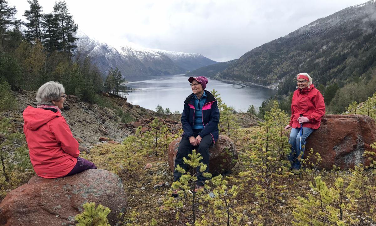 Triveleg å treffast. Utsikt utover Todalsfjorden. Foto: Dordi J H