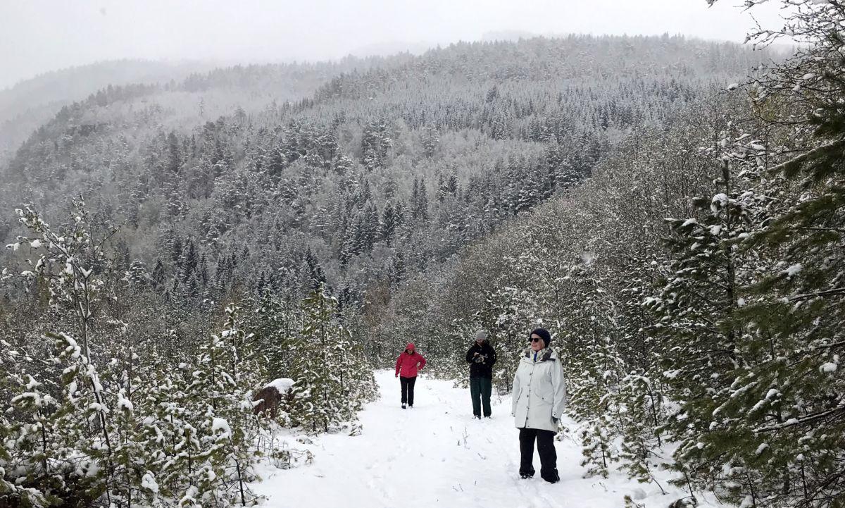 Vinterdag i mai! Foto: Dordi J H