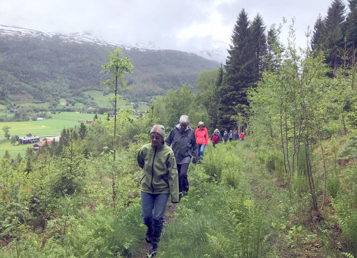 Lang, lang rekke: Foto: Dordi J H