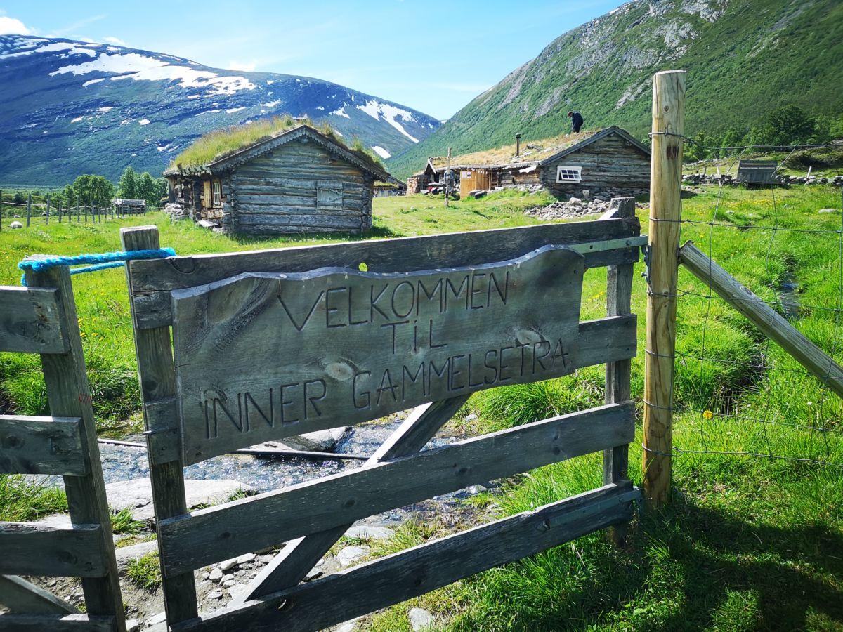 Furkjunnmat og seterdrift i Grøvudalen.