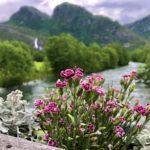 En  sommerdag  på  Kårvatn!