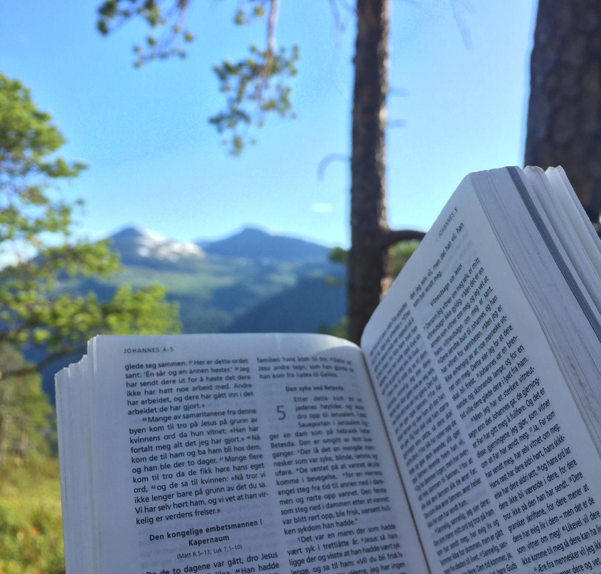 Bibeluke i Todalen