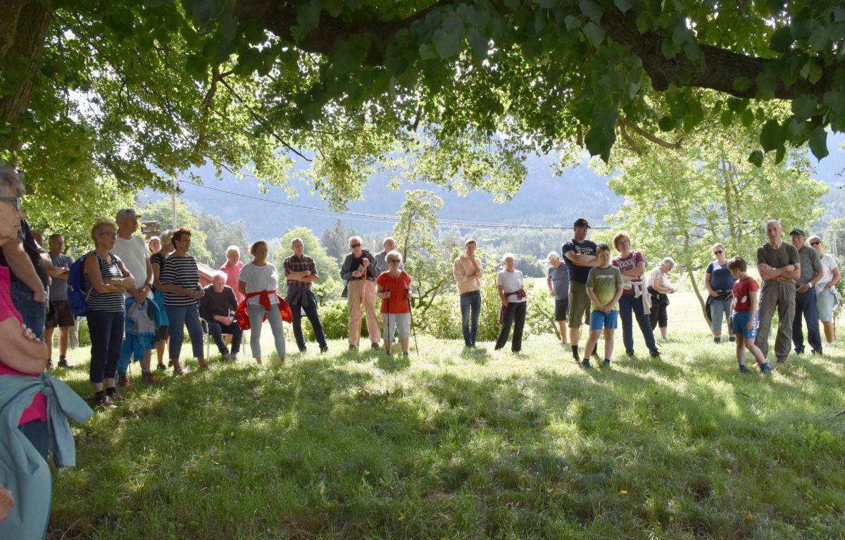 Rundt 40 deltakarar på den historiske turen på Hala.  Foto: Jon Olav Ørsal
