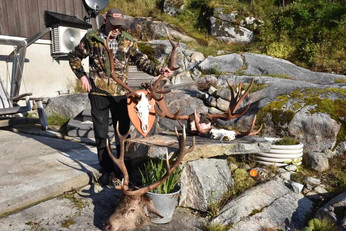 Nils Gjeldnes med eit utval av gevir som no er inne for preparering.   Foto: Jon Olav Ørsal