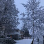 Vinter  i  tunet