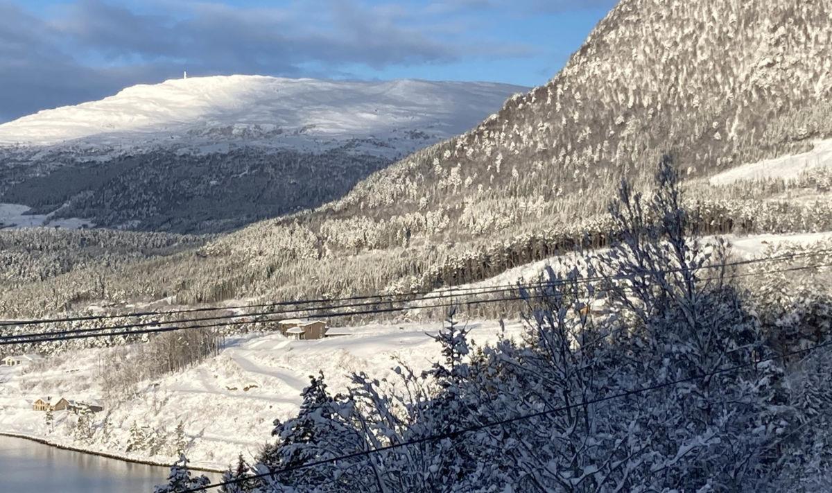 Nordvik - det var i terrenget opp mot Snyta at gaupejakta foregikk måndag.  Foto: Jon Olav Ørsal