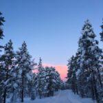 Vinter i Sommarfjøsbakkan