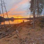 Vea-arbeid på Nordvik