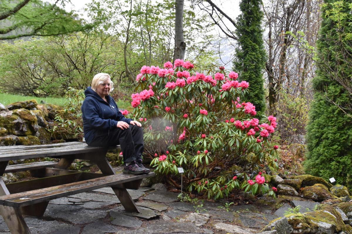 Katarina Wedelsbäck Bladh er fagleg leiar i arboretet. No er ho glad for at sesongen er i gang.  No treng vi eit par dagar med varme..  Foto: Jon Olav Ørsal
