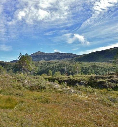 Svarrafjellet. Foto: Arkiv