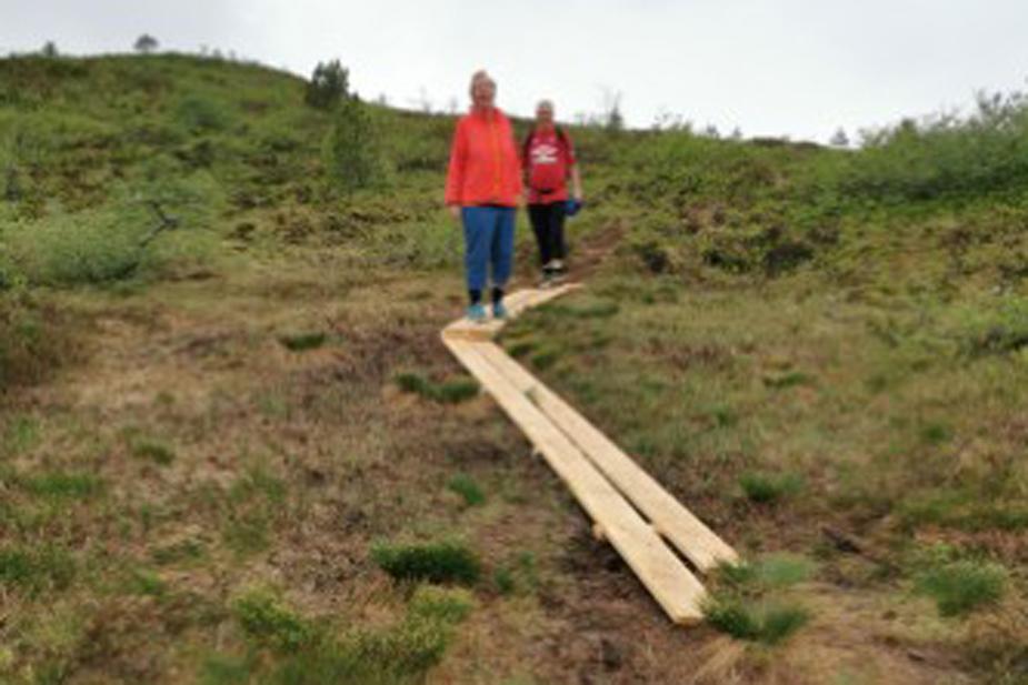 Plankevegen opp til Snyta - no går du omtrent tørrskodd.  Foto: Odd Arild Sande